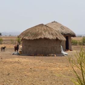アフリカ大陸のタンザニアで海外ボランティア
